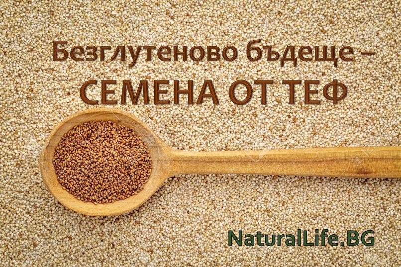 Чували ли сте за семената от ТЕФ?